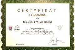 Certyfikat potwierdzający zdanie egzaminu