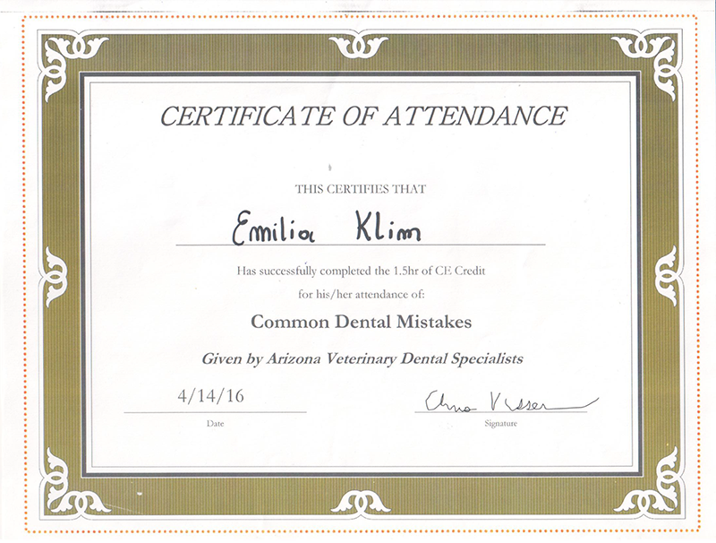 Common Dental Mistakes, 2016