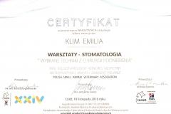 Certyfikat uczestnictwa w warsztatach
